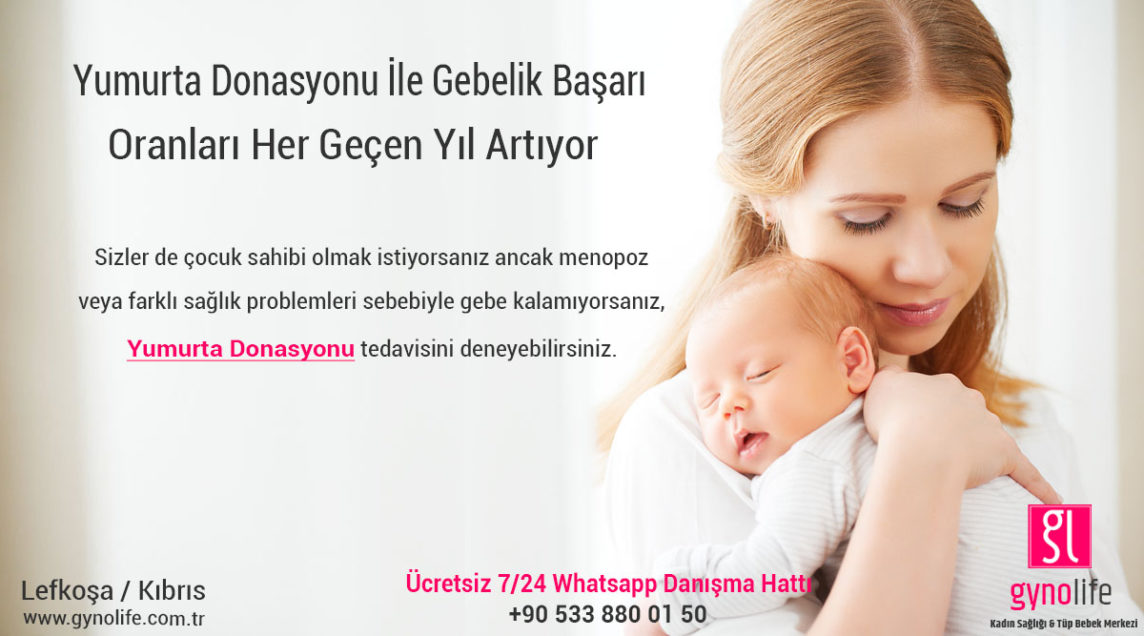 yumurta donasyonu başarı oranları - tüp bebek başarı oranları