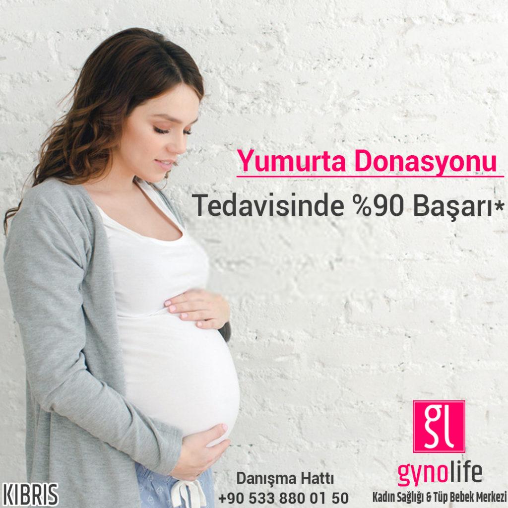 yumurta donasyonu - tüp bebek başarı - en başarılı tüp bebek merkezi - kıbrıs tüp bebek - gyno life tüp bebek merkezi